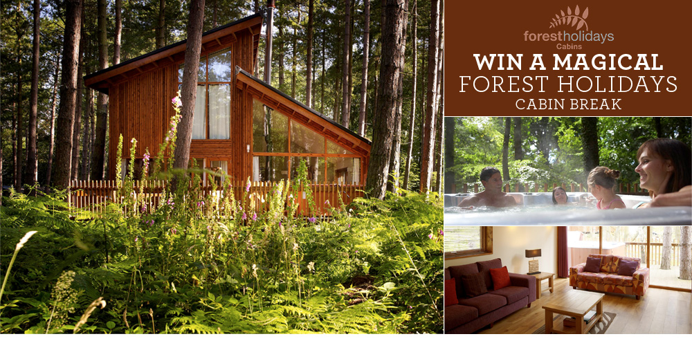 win a magical forest holiday cabin break