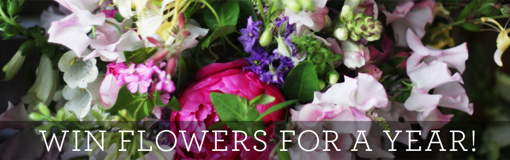 wim flowers for a year