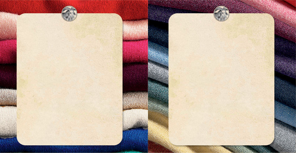 cashmere for women
