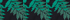 Lush Tropic Green Print